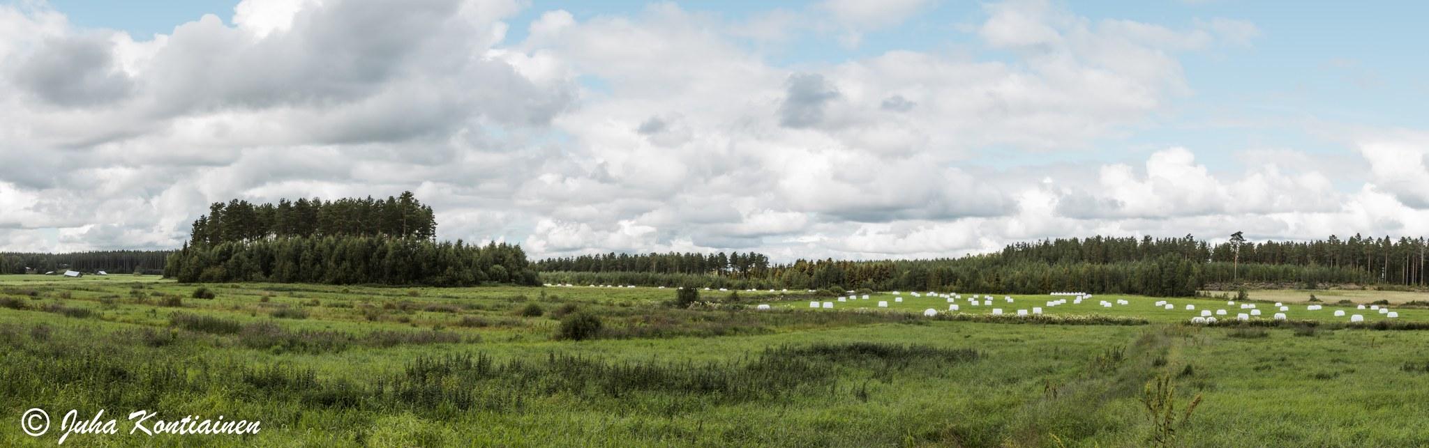 luonto ja ympäristöneuvoja Parkano